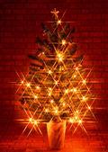 圣诞新年的图片 — 图库照片