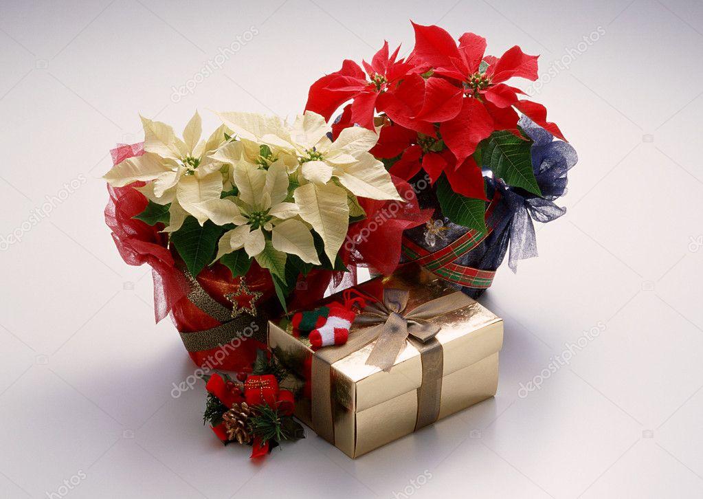 Магазин оригинальных подарков - сувениры, подарки мужчинам ...