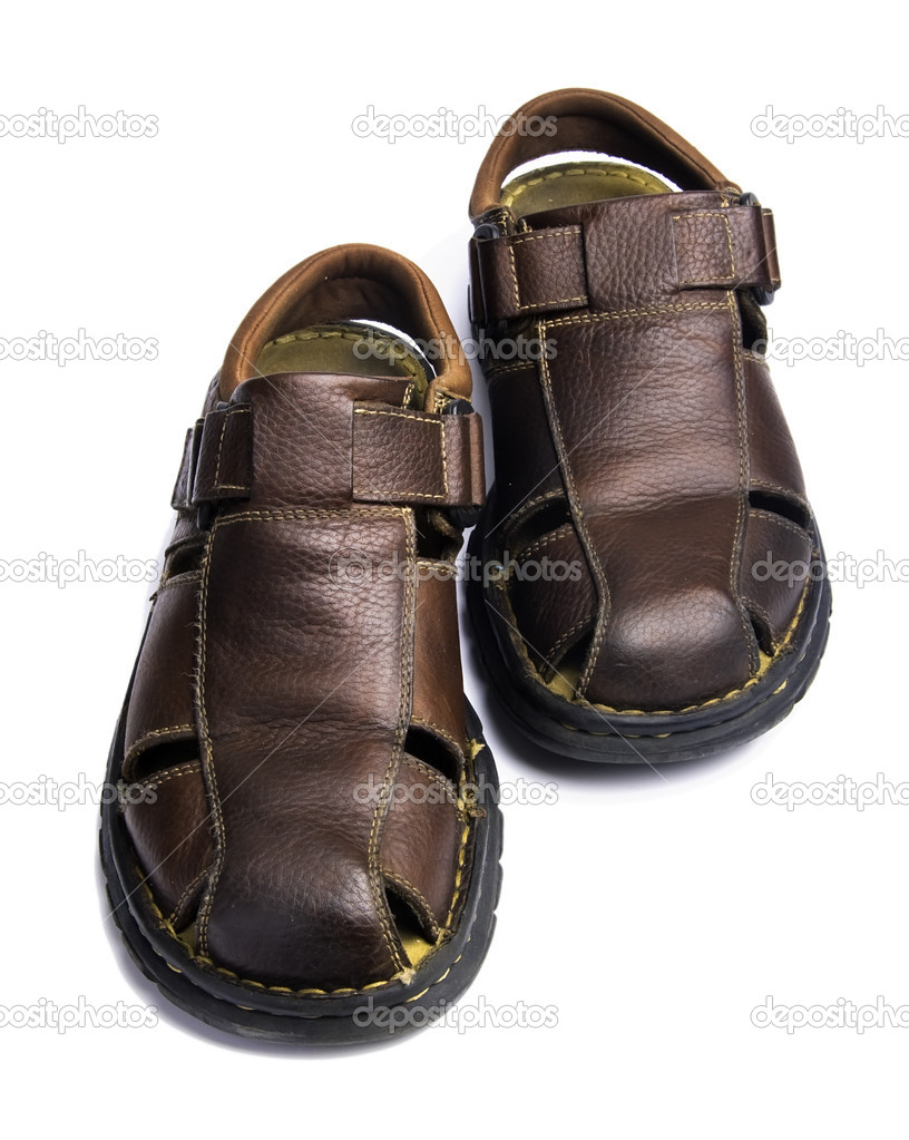 Travel Fox Shoes Price
