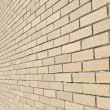 Bricked Wall Background Perspective - Stock Photo