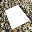 White card isolated at the beach — Stock Photo