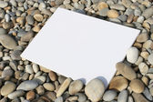 White card at the beach isolated — Stock Photo