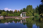 Pond in the Park Arboretum Sochi — Stock Photo