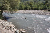Shallow river in the town of Sochi — Stock Photo