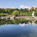 Pond in the park Arboretum — Stock Photo