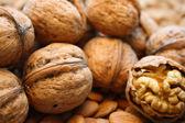 Wallnuts — Stock Photo