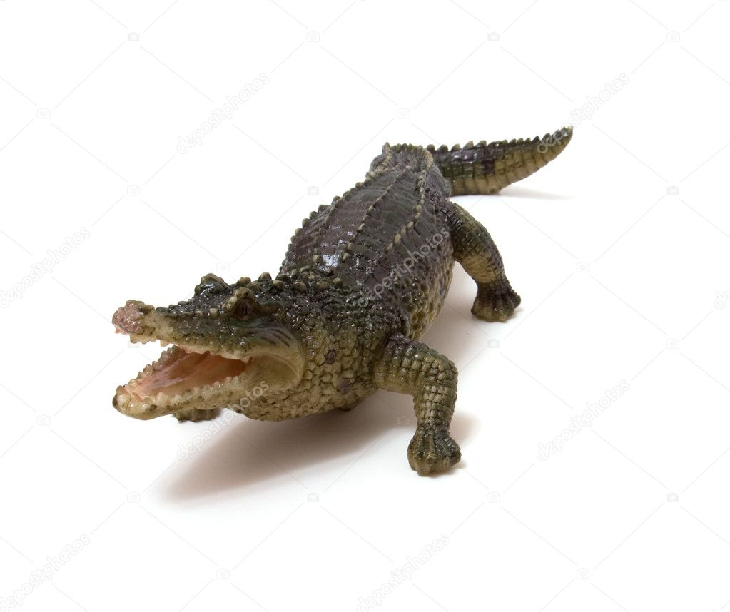 Ceramics crocodile isolated on white background — Zdjęcie stockowe #1542633