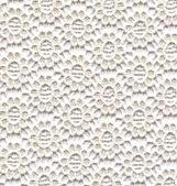 Flores de renda branca — Fotografia Stock