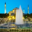 HagiSophichurch in Istanbul — Stock Photo #1496152