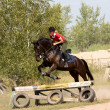 Womanl on horse jumping over barrier — Stock Photo