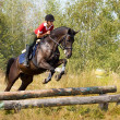 Girl on jumping horse — Stock Photo #1507321