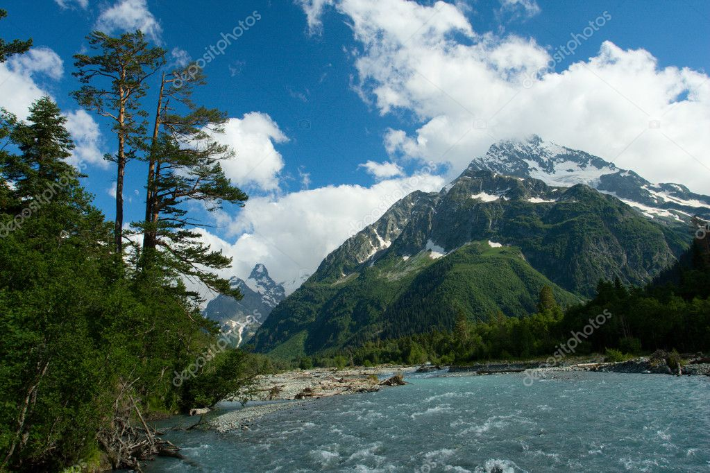 Mountain landscape with tree and river  Stock Photo #1508146