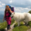 Backpacker girl with samoyed dog — Stock Photo #1519318