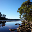 Morning on wild Tasmanian river — Stock Photo