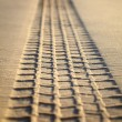 Print of a tyre tread on a sand — Stock Photo