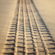 Print of tyre tread on sand — Stock Photo #1535221