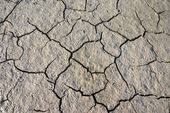 Parched crannied earth — Stock Photo