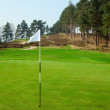 Flag on golf field — Stock Photo