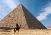 Beduin na wielbłądzie w pobliżu wielkiej piramidy — Zdjęcie stockowe
