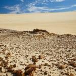 Stones in desert — Stock Photo