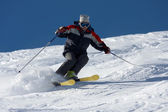 Skiing in powder snow — Stock Photo