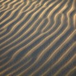 Undulating texture on a sand - Stock Photo