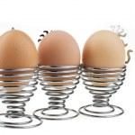 Color chicken eggs over white — Stock Photo #1642655