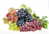 Grape food over white — Stock Photo