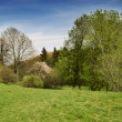 Beautiful spring nature landscape - Stock Photo