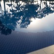 Stock Photo: Reflection of trees on pool water