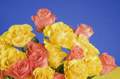 Color roses bouquet over blue background — Stock Photo