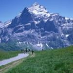 Mountain range — Stock Photo #1499881