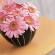 Bouquet of  flower arrangement - Stockfoto