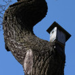 Bird's house on a curve tree - Stock Photo