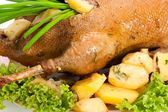 Goose baked with potatoes — Stock Photo
