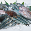 Stock Photo: Fresh fish isolated