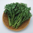 Stock Photo: Coriander or Cilantro in basket