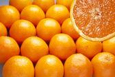 Orange slice backgrounds — Stock Photo