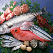 Stock Photo: Fresh and healthy fish seafood