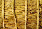 Texture of a thatched roof — Stock Photo
