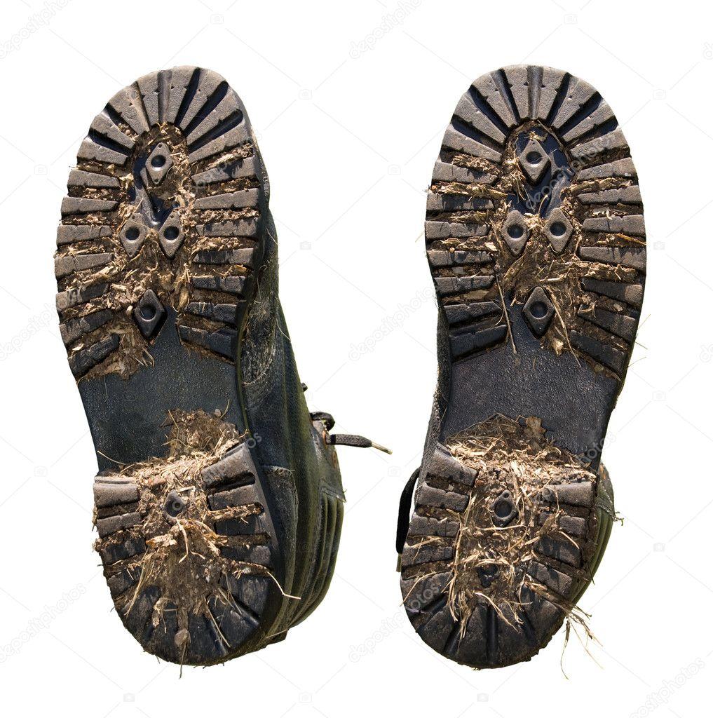 Целовать женскую обувь фото 6 фотография