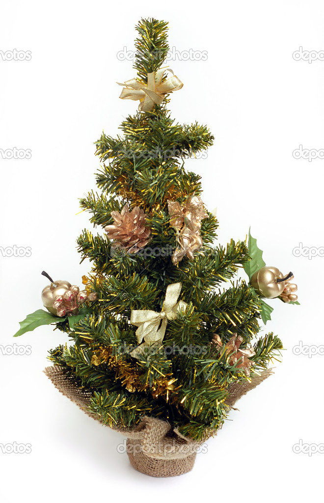 Christmas Tree  Stock Photo #1514361