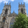 Beautiful view of York-Minster — Stock Photo #2111990