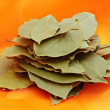 Bay leaves — Stock Photo #1497603