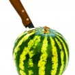 Melon and knife - Stock Photo