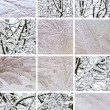 Winter collage — Stock Photo #1498392