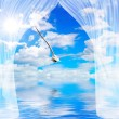 Seagull water and sun through curtain — Stock Photo