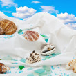 Marine decoration — Stock Photo