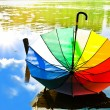 Multicolored umbrella — Stock Photo #1498855