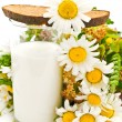 Bread milk and camomile — Stock Photo